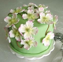 green cake decorated with dogwood flowers | baking corner