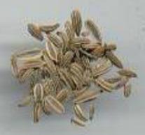 Anise Seed vs Licorice