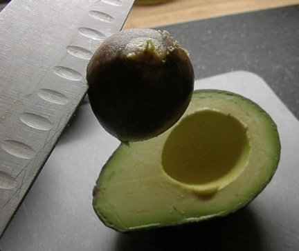avocado pitted