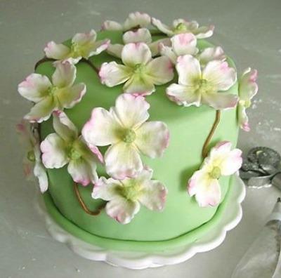 Dogwood Cake