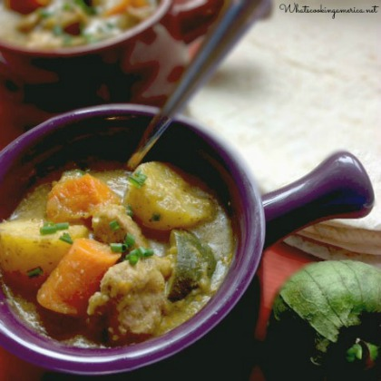 Slow Cooker Pork Chile Verde Stew