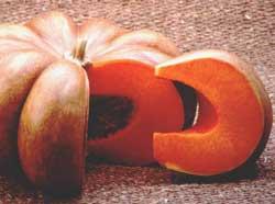 Pumpkin Recipe Collection