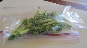 Freezing Kale Stems