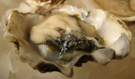 How to shuck oysters