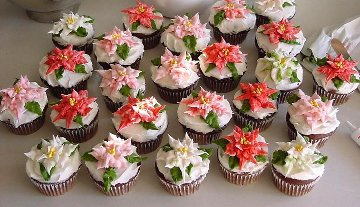 rows of cupcakes decorated with different colored poinsettia flowers made with icing