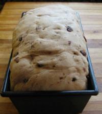 Raisin Bread Dough Rising