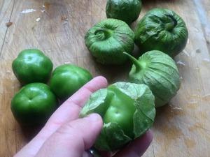 Husking Tomatillos