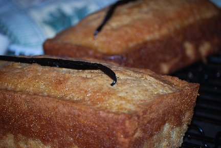 Quick Bread Recipe Collection