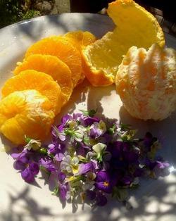 Oranges and Violets