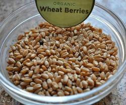 Organic Wheat Berries