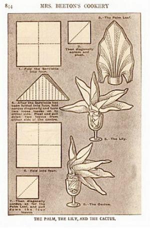 Palm- lily-Cactus-Beeton