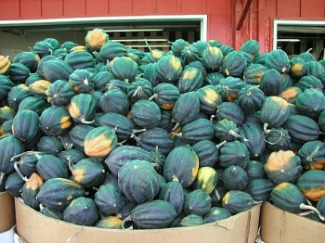Types Of Squash Summer And Winter Squash Whats Cooking America