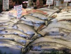 Whole Salmon