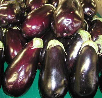 Eggplant Recipe Collection