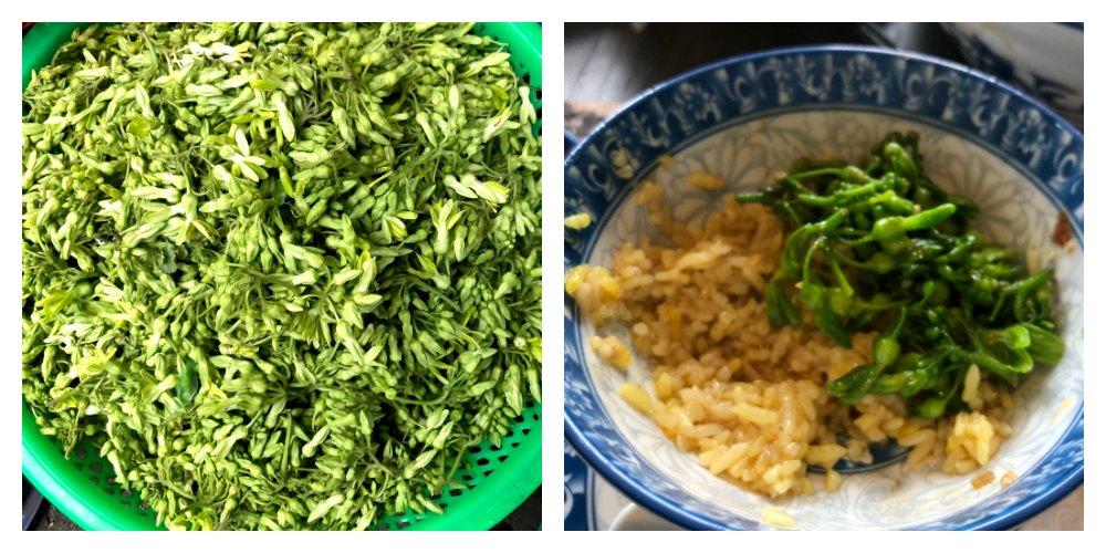 """Food Travels - Vietnam I found my new favorite green, Tonkin Jasmine known as""""bông thiên lý"""",""""hoa thiên lý"""" or """"dạ lý hương""""."""